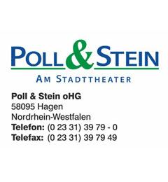 Poll_u_Stein_web